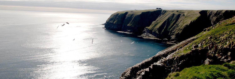 c080009 07rr Newfoundland